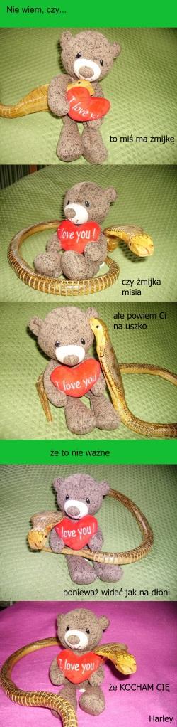 beza-tytulu